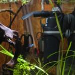 Низкие цены на коляски